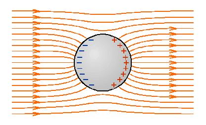 elektromos-ter Homogén erőtér erővonalképe